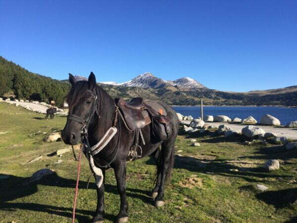Randonnées équestres transpyrénées